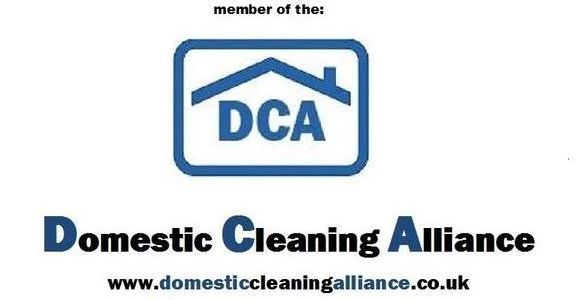 domestic cleaning alliance logo